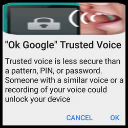 Trusted Voice (Google)