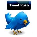 tweet push