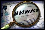 wikileaks lupa