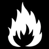 Fire (B/W)