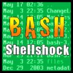 Shellshock (Bash)